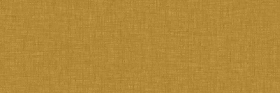 Radiant Brass Y0377 Laminate Countertops