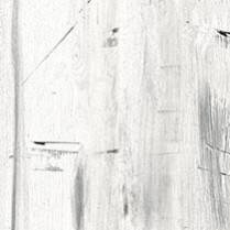High Pressure Laminate Blonde Gesso Wood Y0297